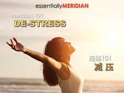 Meridian 101 DE-STRESS Workshop